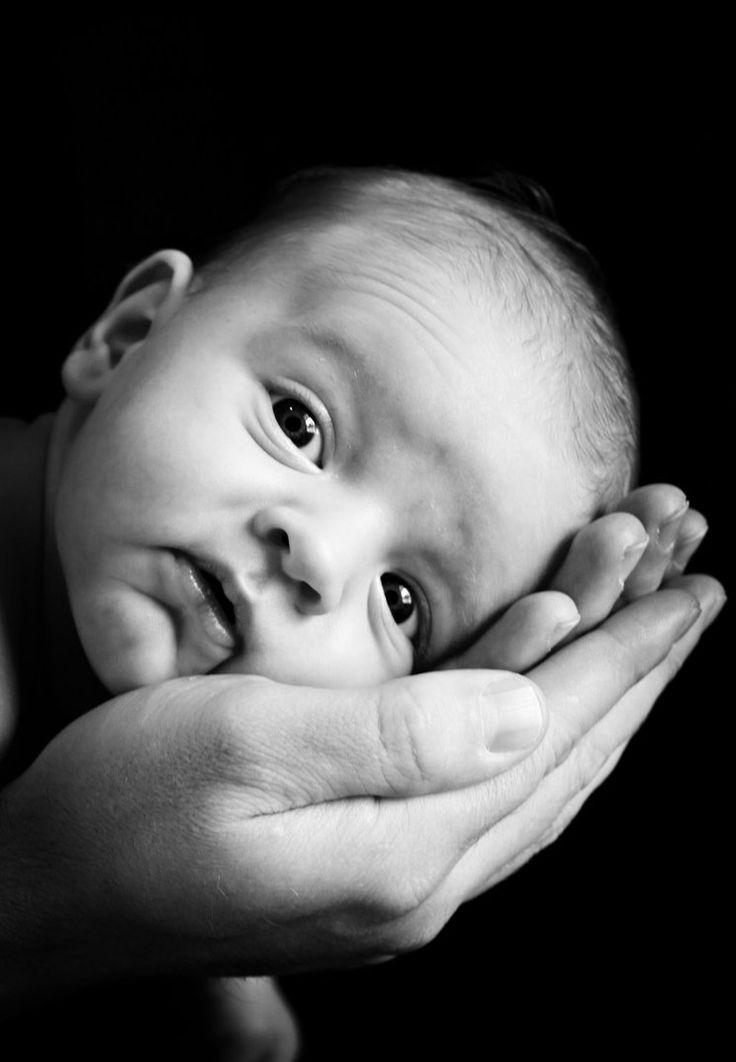 Черно белые картинки для новорожденных фото
