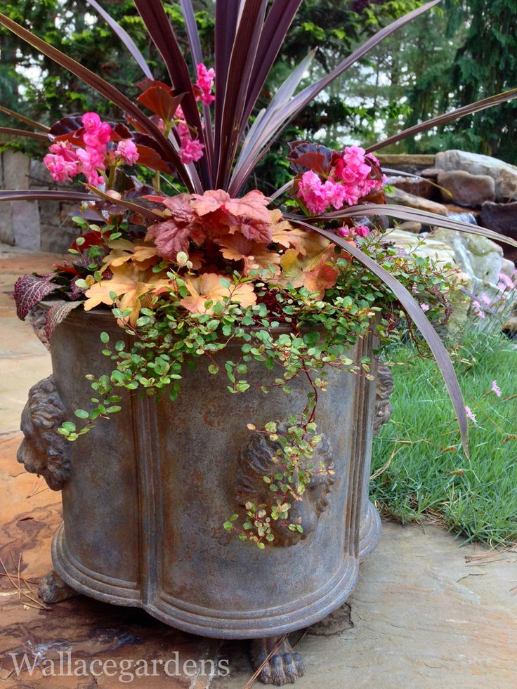 Planter Garden Ideas 122 container gardening ideas Find This Pin And More On Summer Planters