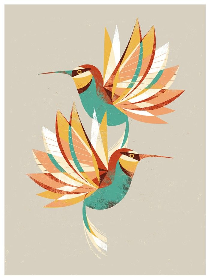 Hummingbird Drawings Step By Step: 25+ Best Ideas About Hummingbird Illustration On Pinterest