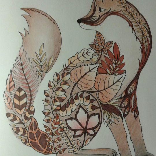 Enchanted Forest Fox Joanna BasfordAdult ColoringColoring BooksArt