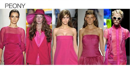 Top color. Womens Spring 2012 trend report, peony
