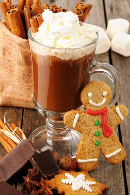 Cet hiver il va de nouveau faire froid et pour affronter les températures, quoi de mieux qu'une tasse remplie d'un bon chocolat chaud, pour se réchauffer? Accoudé à la fenêtre à regarder les flocons de neige tomber ou devant la cheminée à côté du sapin, d