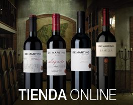 De Martino's motto is Reinventing Chile and they are true revolutionaries in many areas....centuries old clay pots; 5,000 liter, sun-dried (not toasted) German oak vats; French and American oak barrels with a minimum of 10 uses; 347 different plantations representing every wine valley in Chile.