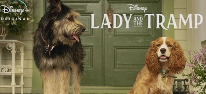 Lady And The Tramp Remake Will Have Janelle Monae Revamp That Problematic Siamese Cat Song Lady And The Tramp Disney Live Action Disney Live