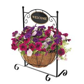Plants need only half the watering with the Welcome Stand Basket.