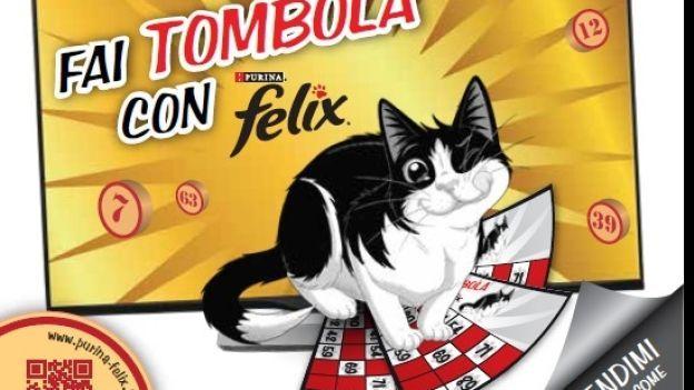 Come giocare alla tombola di Natale online di Felix