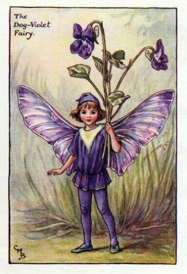Dog-Violet Flower Fairy » Flower Fairy Prints- Vintage Fairy ...