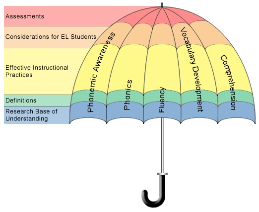 an analysis of the components of literacy An analysis of the correlations between the attitude, behavior, and knowledge components of environmental literacy in undergraduate university students.