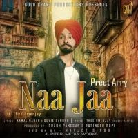 Naa Jaa Is The Single Track By Singer Preet Arry.Lyrics Of This Song Has Been Penned By Kamal Nahar,Guvie Sandhu & Music Of This Song Has Been Given By Thee Emenjay.