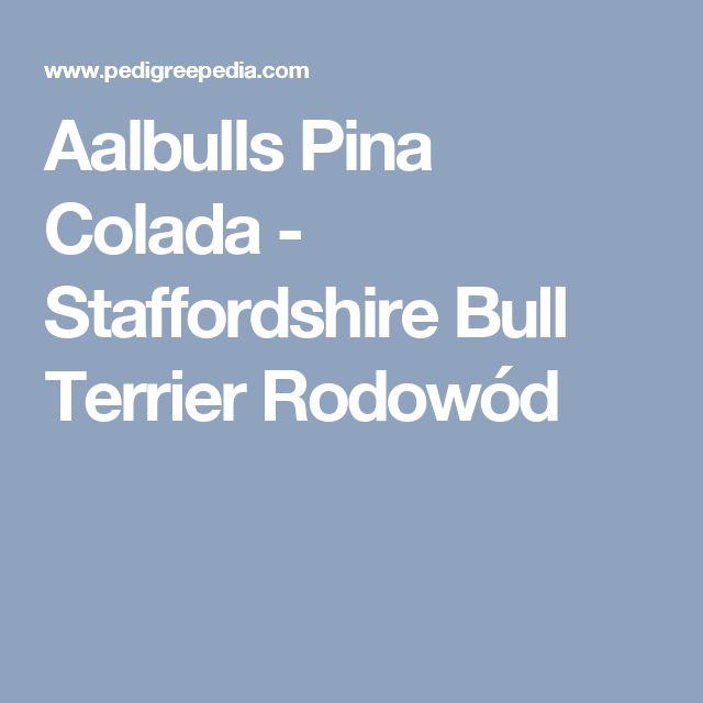 Aalbulls Pina Colada - Staffordshire Bull Terrier Rodowód