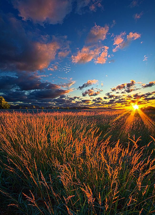 ✯ Comes A Time by Phil Koch