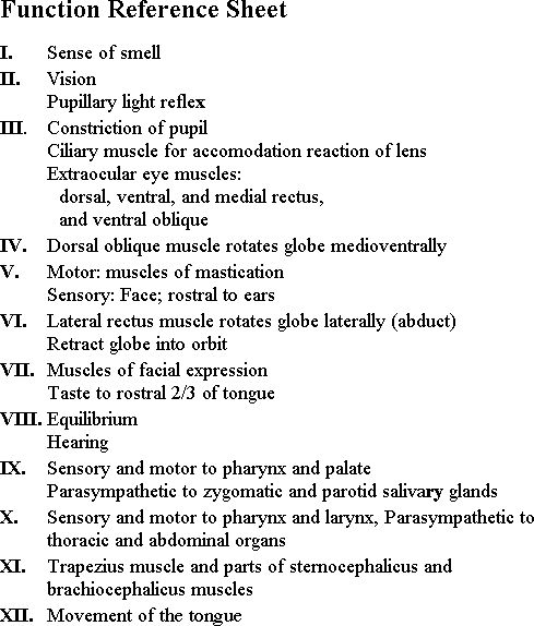 cranial nerves by number picture | Reference Sheet for cranial nerve function: