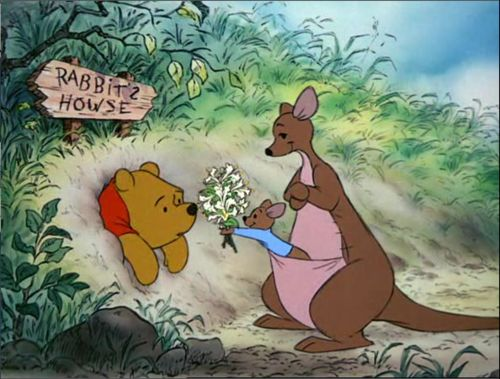 You are never to old for Winnie the Pooh