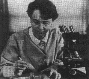 Barbara McClintock - genetic scientist -first female to win a Noble Peace Prize