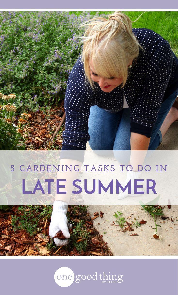 763 best Home | Garden Ideas images on Pinterest | Garden, Plants ...