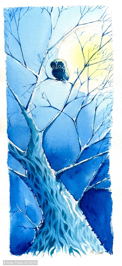 Pretty little owl painting in a blue winter tree. Antje Püpke