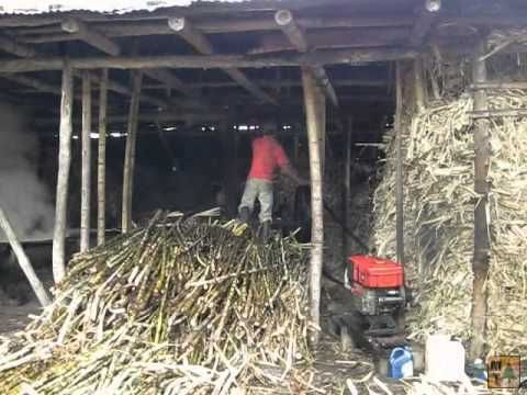 VIDEO| Sugar Cane Processing - Trapiche | Isnos, Colombia | #travel #Colombia | Gallery @ https://www.flickr.com/photos/haluzman/albums/72157651674262659