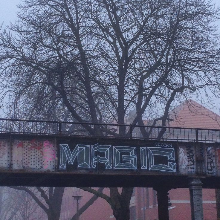 #berlin #alttreptow #treptow #misty #mist #graffiti #tree #trees #magic