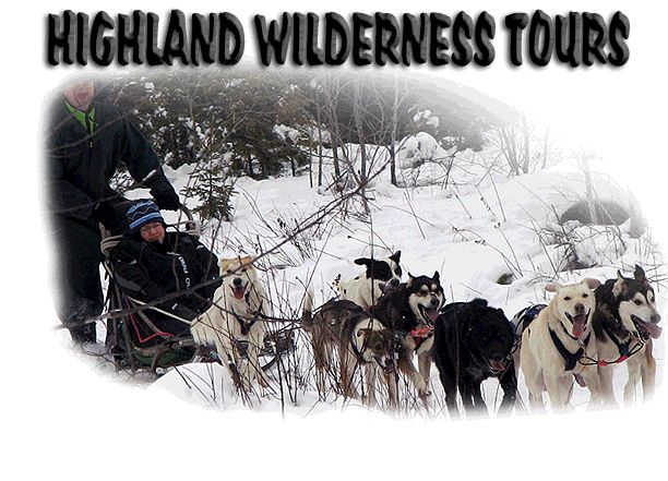 Highland Wilderness Tours, located in Maynooth, ON. Horse Camps, Snowmobiling, Dogsledding and ATV Tours, Riding Stables, Algonquin Park, Ontario!