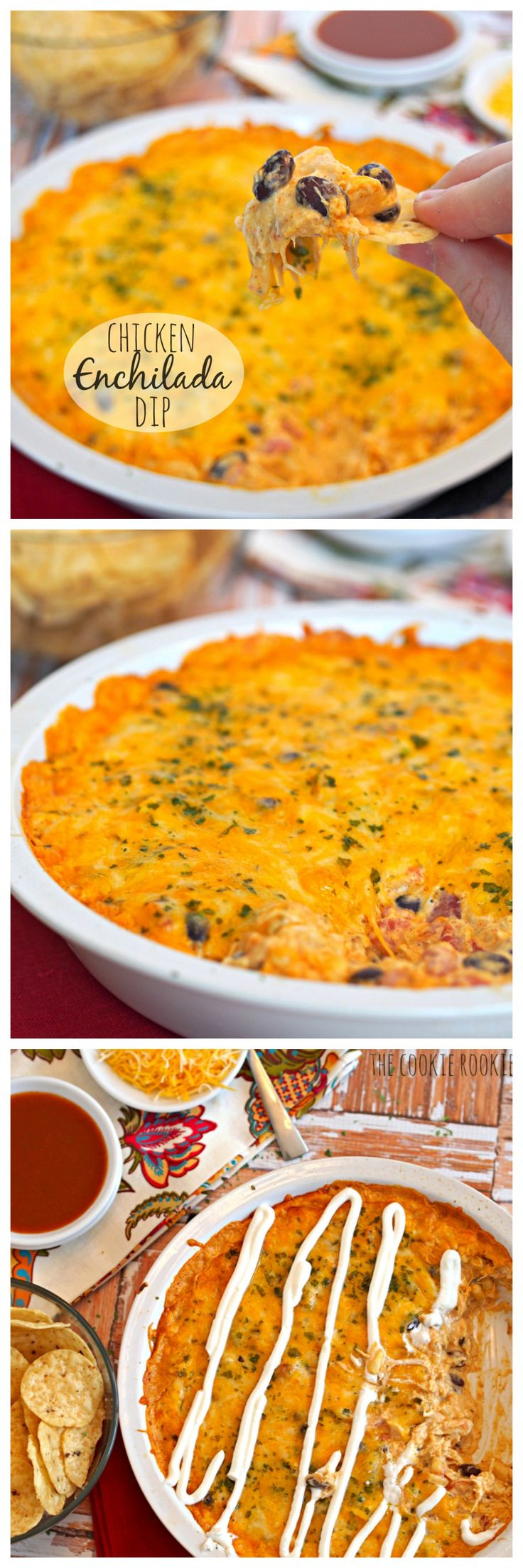 Cheesy Chicken Enchilada Dip is the easiest and best dip ever! My family goes crazy for this! - The Cookie Rookie