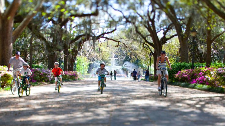 Things to Do in Savannah, Georgia Recommended by a Local