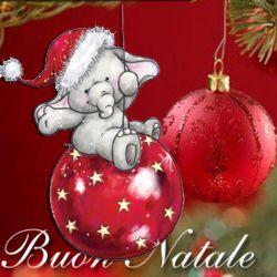 Auguri di Natale – Cucina&Colori.it