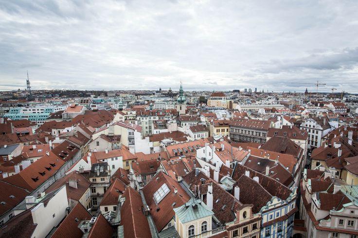 RED ROOFS of PRAGUE. PHOTO: Honza Zima