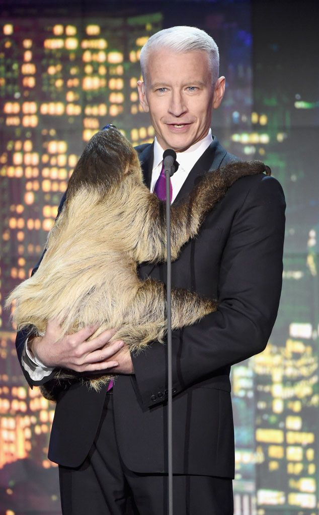 Anderson Cooper from Celebrities Gone Wild: Stars Posing With Exotic Animals  Nothin' to see here—just a serious CNN journalist snuggling up to a sloth.