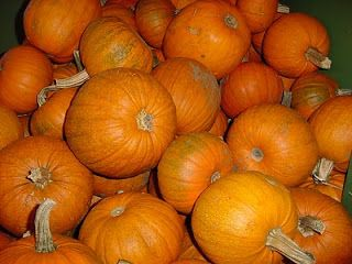 Dormouse and The Teapot: Yummy Halloween pumpkin cake