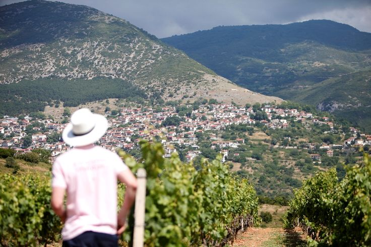 The unique Rapsani village is the perfect background #rapsani #tsantali #wine #adventure #epxerience #oenotourism