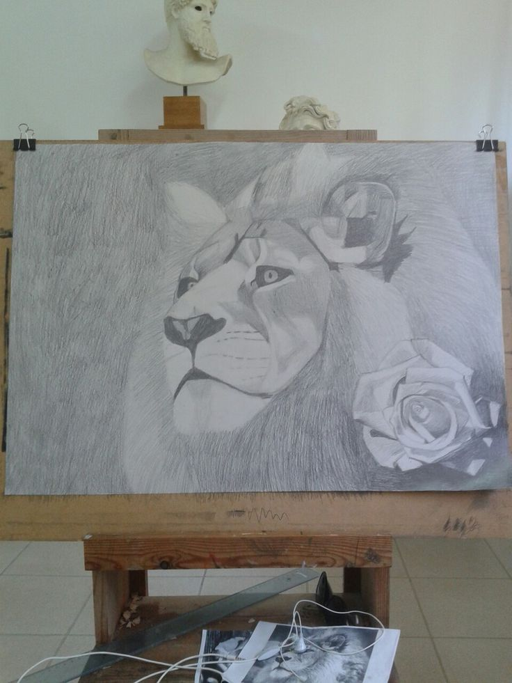 You are a lion for me