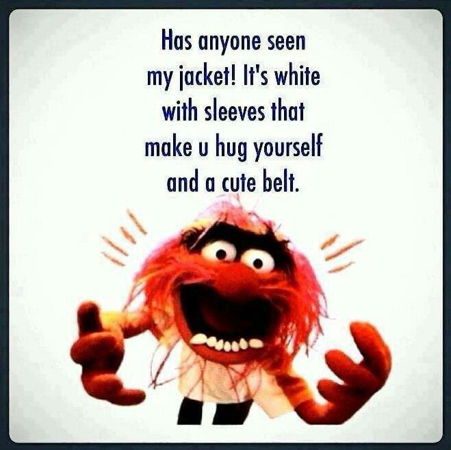 39 Best Muppet Quotes Lol Images On Pinterest: Animal!!!! On Pinterest