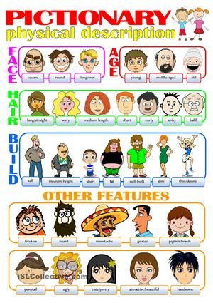 This pictionary includes some basic words to help students describe people physically. It's not intended to be a complete list. I think I will use it as a classroom poster. - ESL worksheets