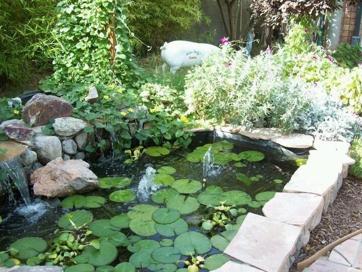 2544 best ponds images on pinterest for Koi pond jets