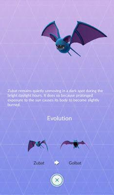 Zubat Pokemon Evolution