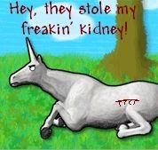 charlie the unicorn   charlie-the-unicorn-charlie-the-unicorn-796746_178_1691.jpg#charlie ...