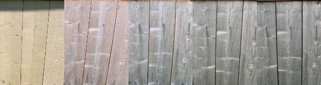 Spruce - Untreated