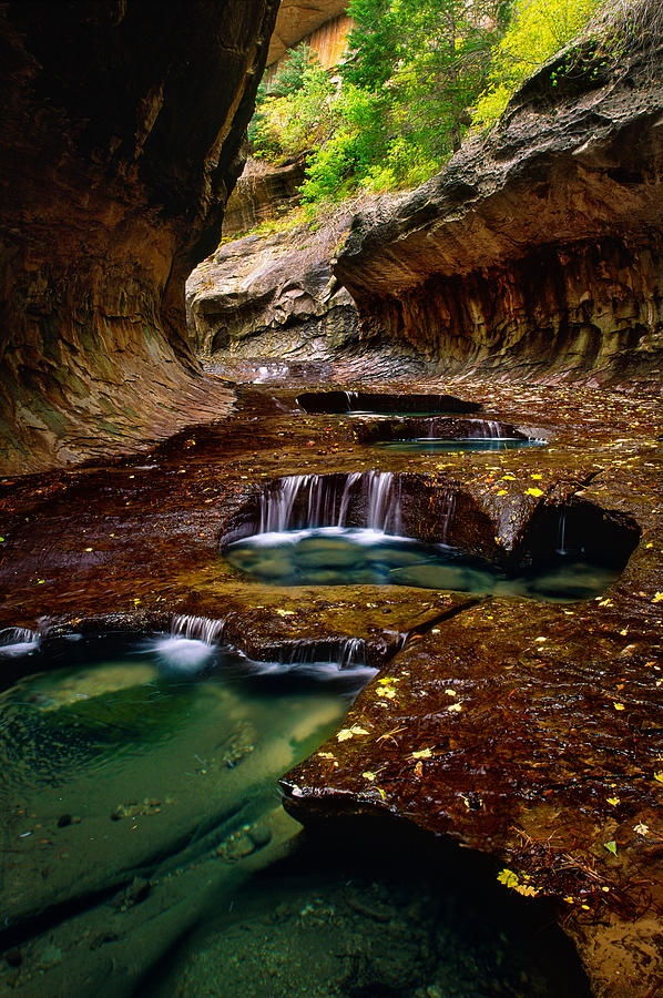 ✯ The Subway section of the left fork of North Creek in Zion National Park
