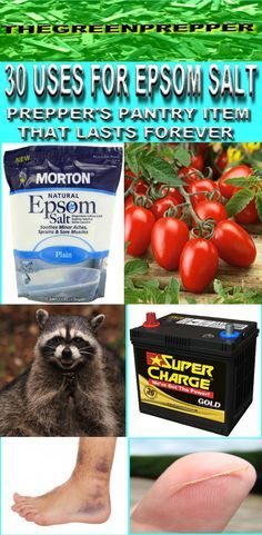 30 USES FOR EPSOM SALT - PREPPERS PANTRY ITEM THAT LASTS FOREVER Excellent info on all the ways you can use Magnesium Sulfate ie Epsom Salt for self-reliant families today or for the Doomsday Prepper Tomorrow! See the indepth info here : http://www.thegreenprepper.com/2015/05/30-uses-for-epsom-salt-preppers-pantry.html