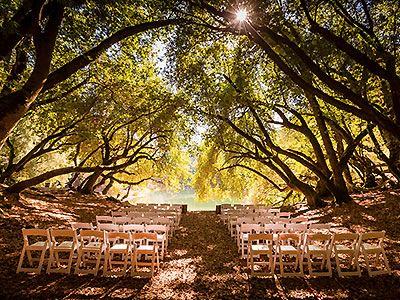 Leonard Lake Reserve Redwood Valley Weddings Rustic California Wedding Venues 95470