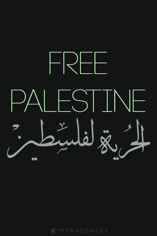 فلسطين | غزة | القدس | Palestine| Gaza | Jerusalem