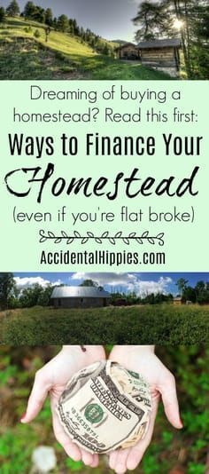 How to Finance Your Homestead (even if you're flat broke) – Gardening