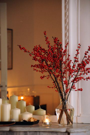 I need to plant a winterberry bush; just so I can clip the beautiful branches and bring them in for the holidays.