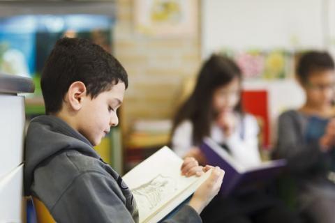 Via www.boek1boek.nu kunnen kinderen op school, maar ook thuis, met één druk op de knop bibliotheekboeken bestellen. De boeken worden vervolgens per klas op school geleverd en in principe elke 3 weken weer opgehaald. Daarmee worden ook kinderen bereikt die normaal gesproken niet snel met boeken in aanraking komen