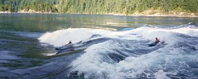 skookumchuck kayaking