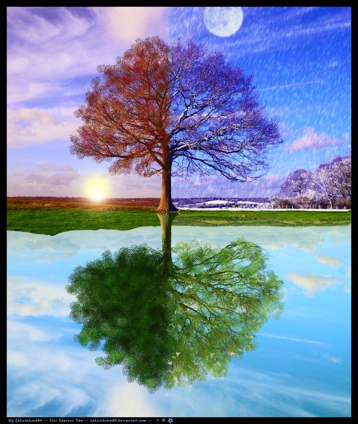 один весна и зима на одной картинке рисунок просторном классе так