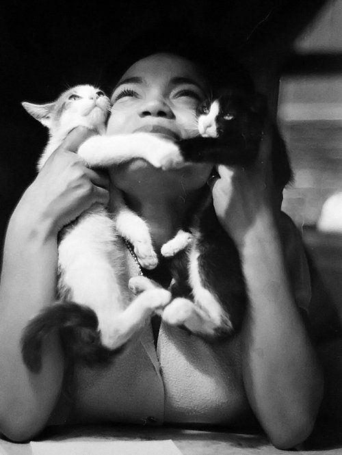 adreciclarte:  Eartha Kitt by Gordon Parks