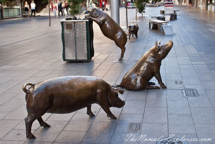 Walking in Adelaide City - Rundle Mall, Pigs