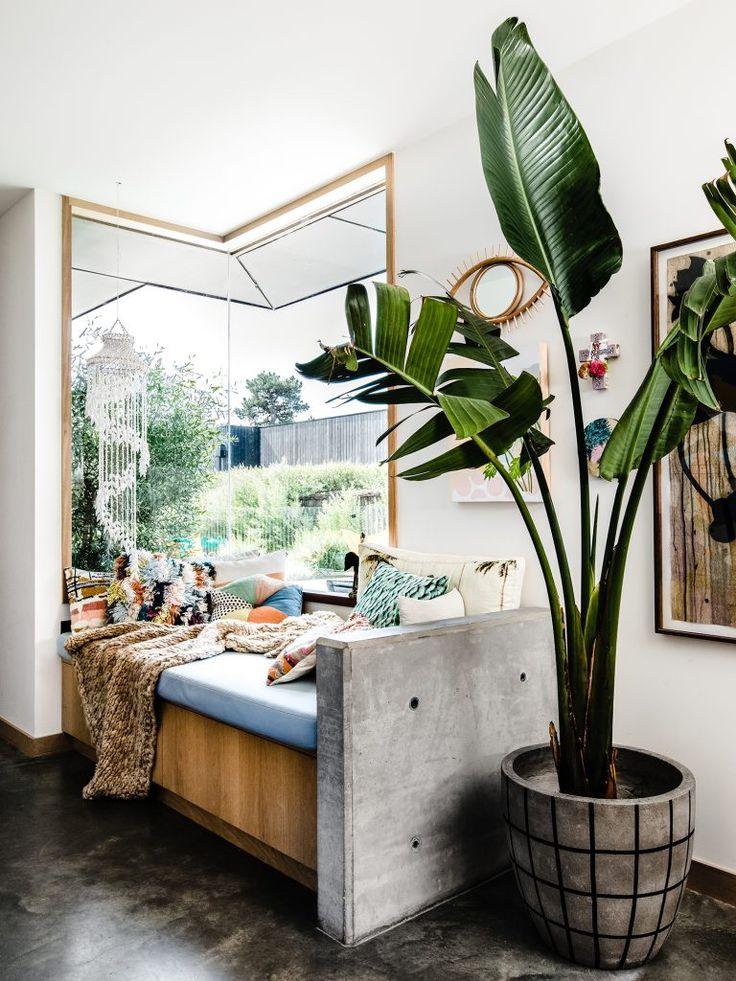картинки спальни растения рекомендую брать сливочный