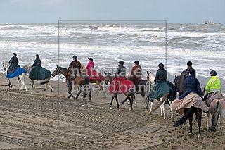 Paarden met berijders in traditionele 18e eeuwse kledij op het strand tijdens de landing van koning willem 1 in scheveningen